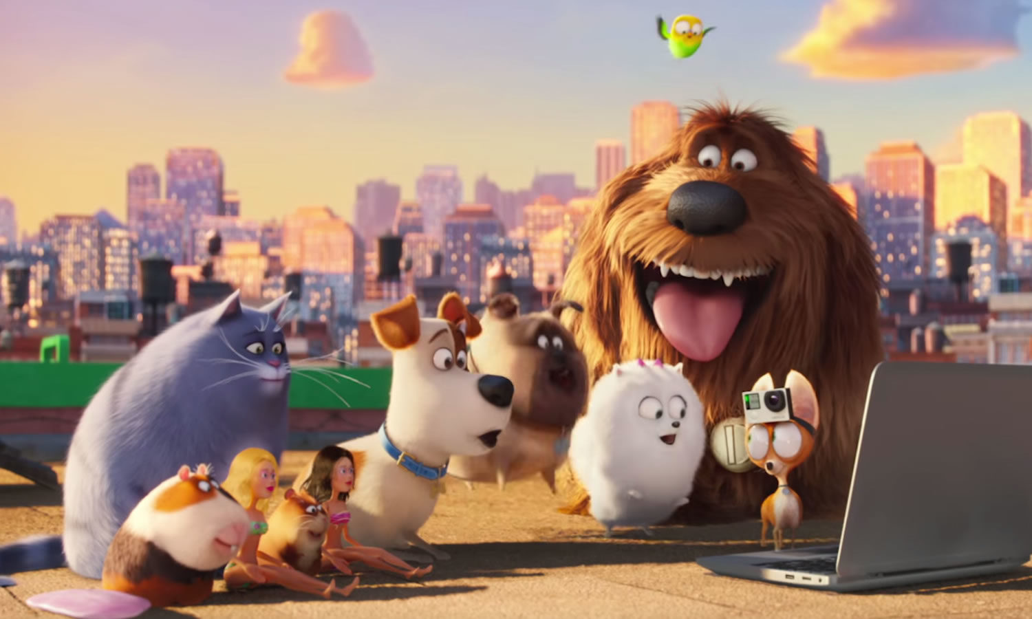 Crítica: Pets – A Vida Secreta dos Bichos (The Secret Life of Pets, EUA, 2016)