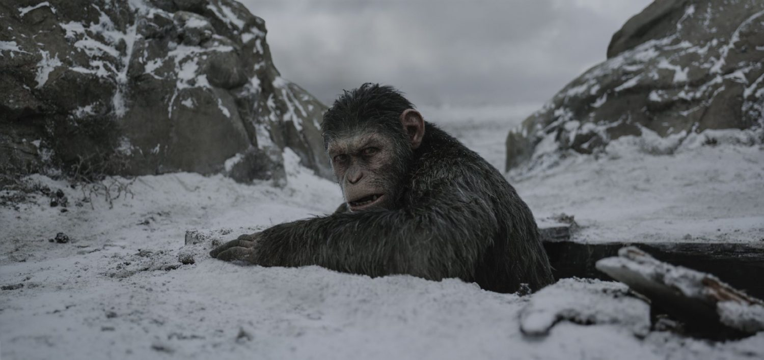 Crítica: Planeta dos Macacos: A Guerra (War For The Planet of The Apes, EUA, 2017)